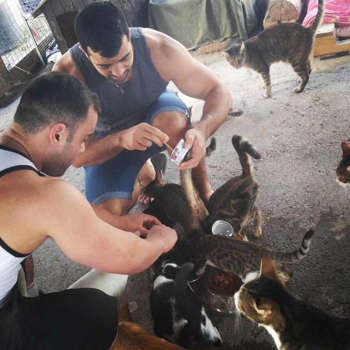 Israel Katzen