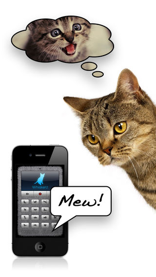 Katze – Mensch – Mensch – Katze: App soll übersetzen