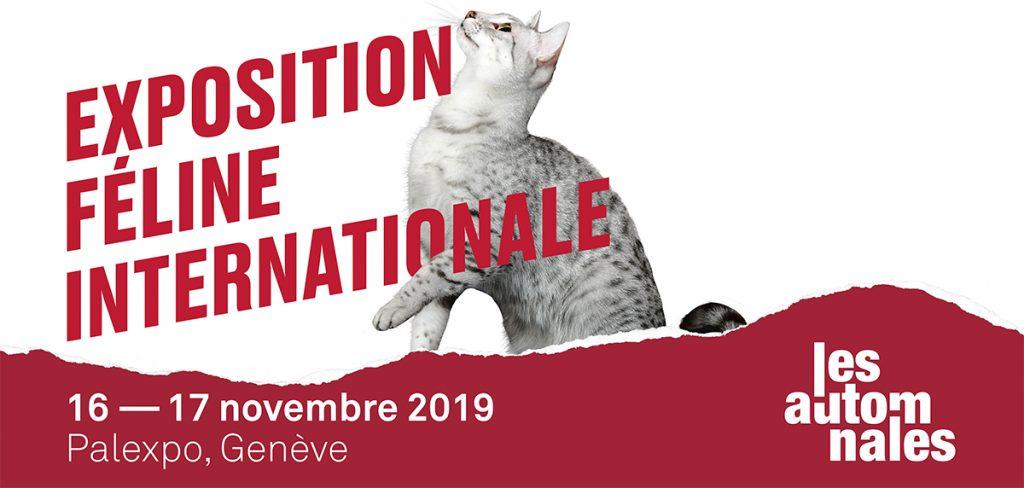 exposition-feline-internationale_les-automnales_palexpo-geneve_