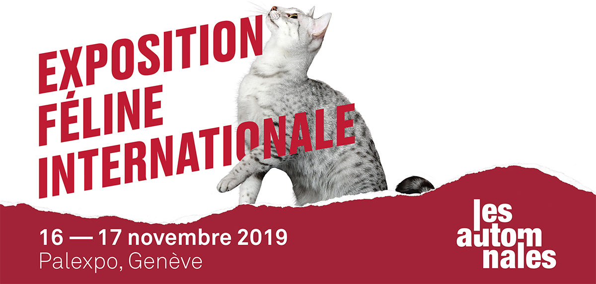 exposition-feline-internationale_les-automnales_palexpo-geneve_
